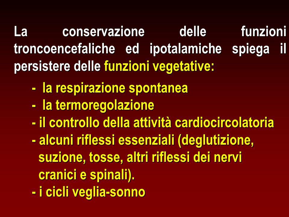 La conservazione delle funzioni troncoencefaliche ed ipotalamiche spiega il persistere delle funzioni vegetative: - la respirazione spontanea - la ter