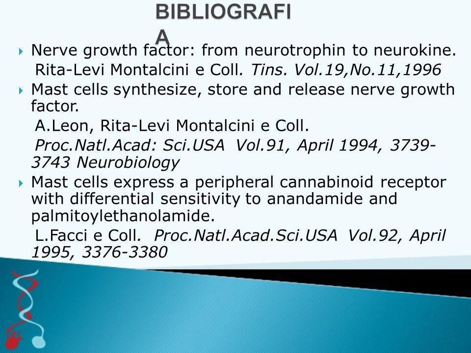  Nerve growth factor: from neurotrophin to neurokine. Rita-Levi Montalcini e Coll. Tins. Vol.19,No.11,1996  Mast cells synthesize, store and release
