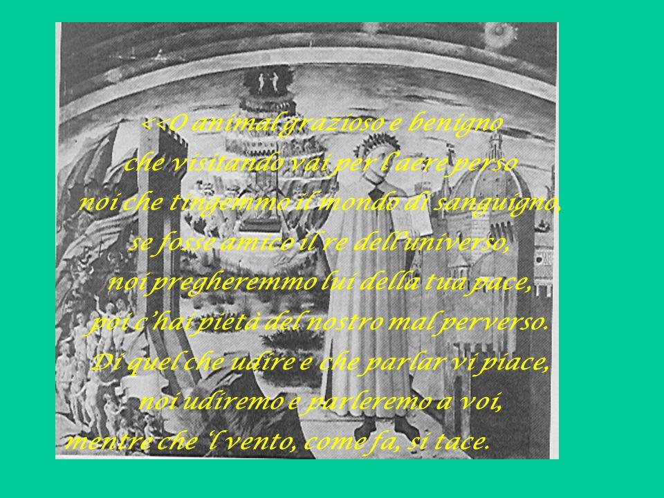 Quali colombe, dal disio chiamate, con l'ali alzate e ferme al dolce nido vengon per l'aere dal voler portate; cotali uscir della schiera ov'è Dido, a noi venendo per l'aere maligno, si forte fu l'affettuoso grido.