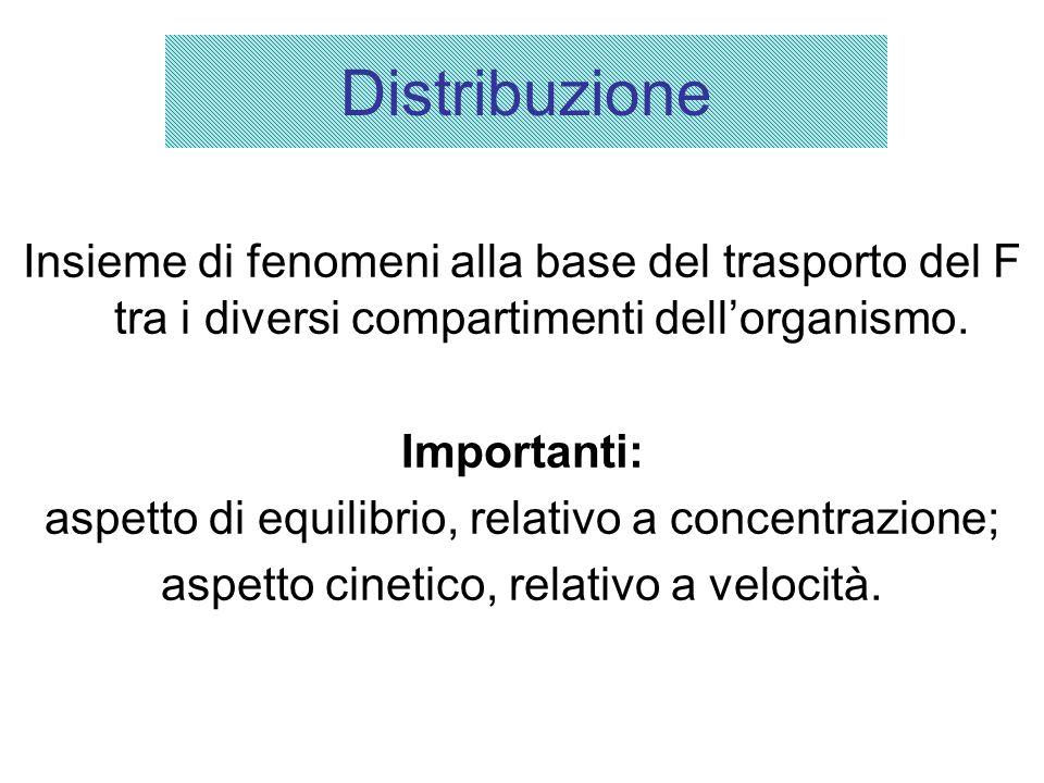 La distribuzione in vari organi e tessuti dipende: dal flusso ematico distrettuale; dalla velocità di diffusione dai capillari agli spazi interstiziali e alle cellule; dall'affinità della sostanza per i componenti dei tessuti.