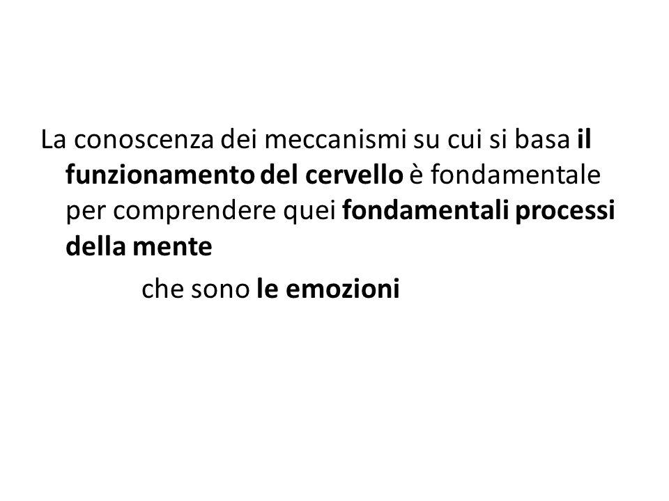La conoscenza dei meccanismi su cui si basa il funzionamento del cervello è fondamentale per comprendere quei fondamentali processi della mente che sono le emozioni
