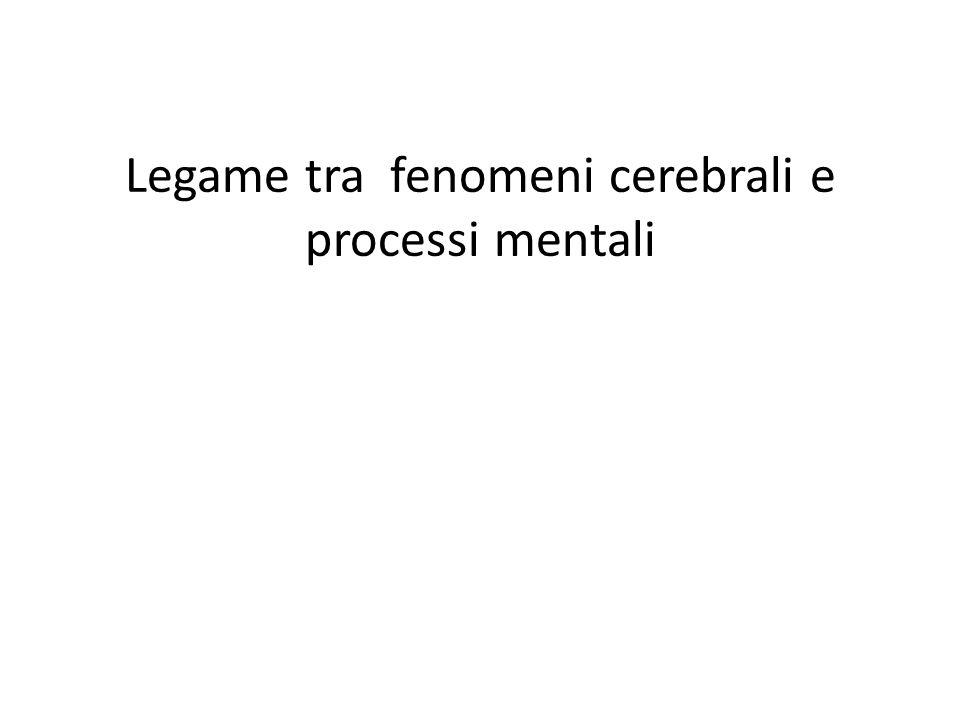 Legame tra fenomeni cerebrali e processi mentali