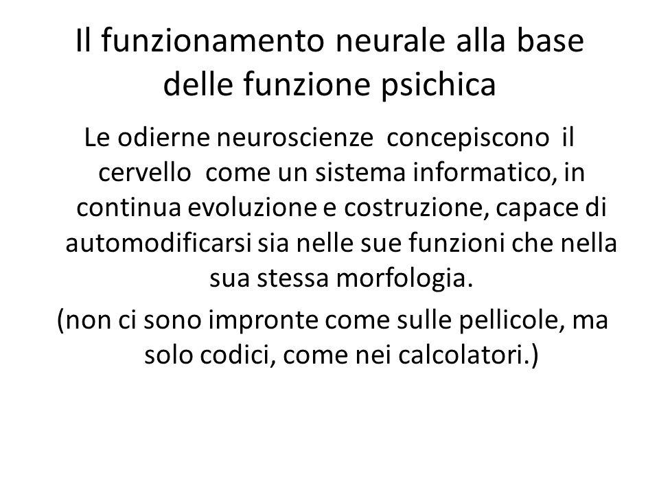 Il funzionamento neurale alla base delle funzione psichica Le odierne neuroscienze concepiscono il cervello come un sistema informatico, in continua evoluzione e costruzione, capace di automodificarsi sia nelle sue funzioni che nella sua stessa morfologia.