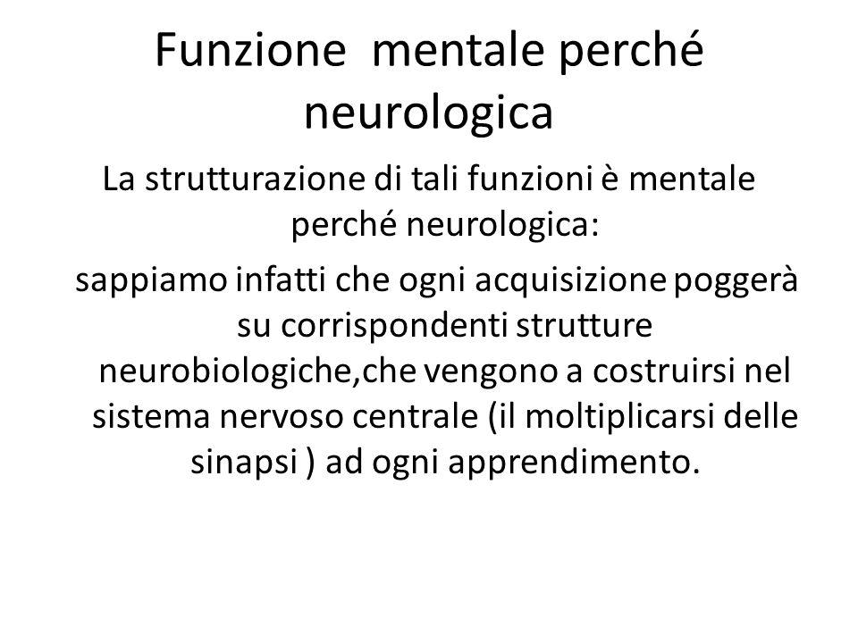 Funzione mentale perché neurologica La strutturazione di tali funzioni è mentale perché neurologica: sappiamo infatti che ogni acquisizione poggerà su corrispondenti strutture neurobiologiche,che vengono a costruirsi nel sistema nervoso centrale (il moltiplicarsi delle sinapsi ) ad ogni apprendimento.