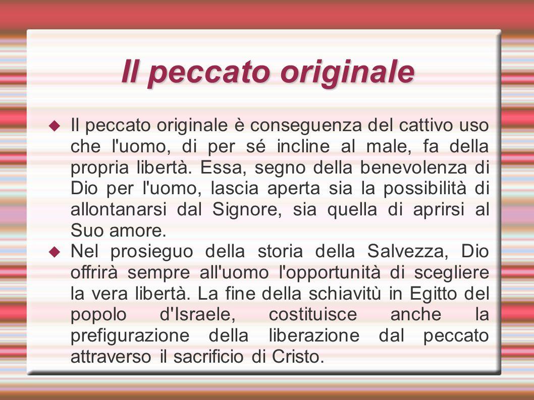 Il peccato originale  Il peccato originale è conseguenza del cattivo uso che l'uomo, di per sé incline al male, fa della propria libertà. Essa, segno