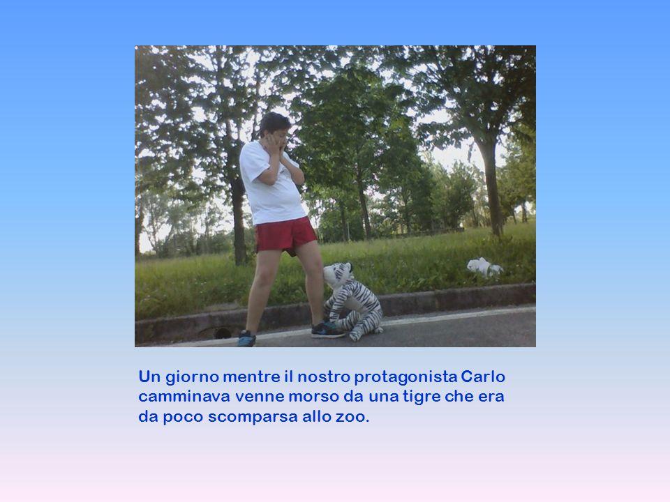 Un giorno mentre il nostro protagonista Carlo camminava venne morso da una tigre che era da poco scomparsa allo zoo.