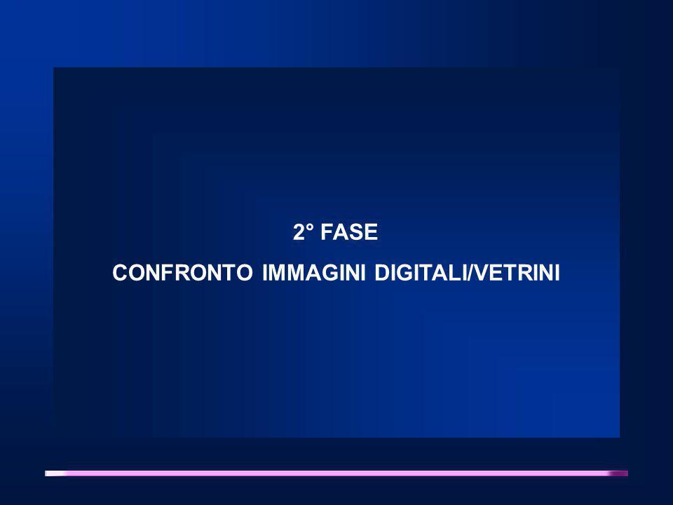 2° FASE CONFRONTO IMMAGINI DIGITALI/VETRINI
