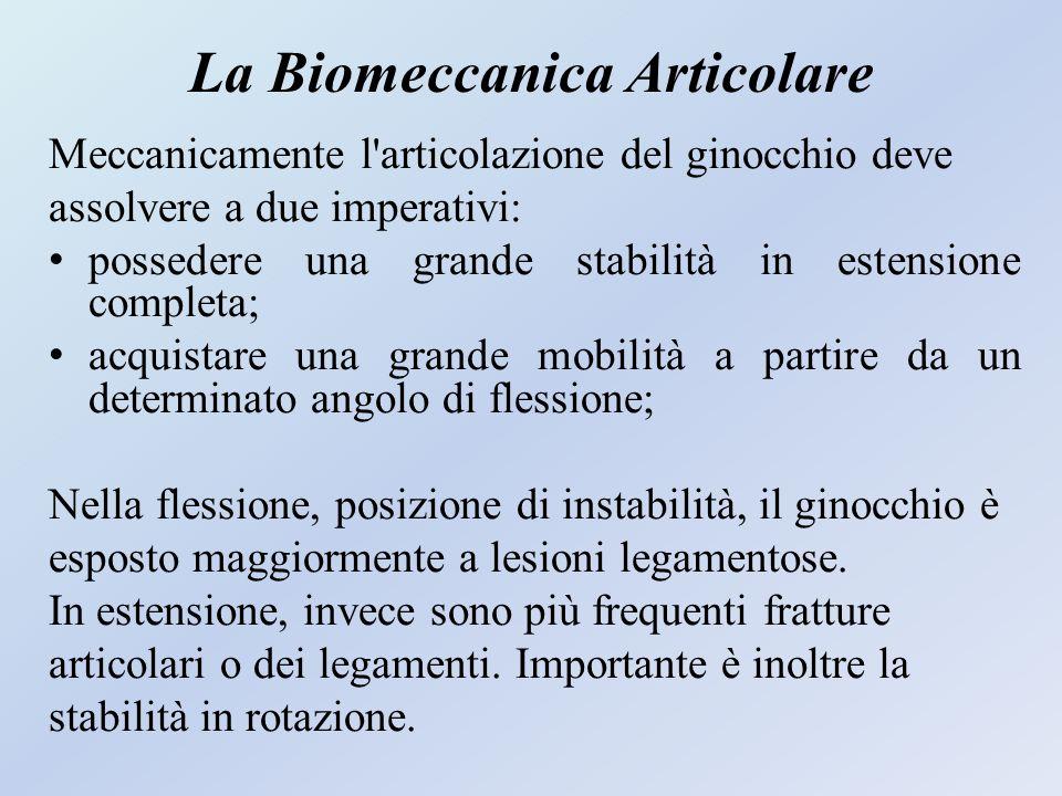 La Biomeccanica Articolare Meccanicamente l'articolazione del ginocchio deve assolvere a due imperativi: possedere una grande stabilità in estensione
