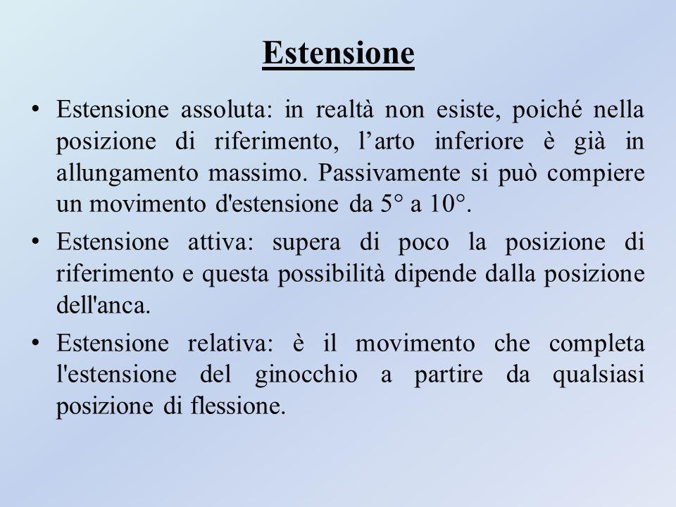 Estensione Estensione assoluta: in realtà non esiste, poiché nella posizione di riferimento, l'arto inferiore è già in allungamento massimo. Passivame
