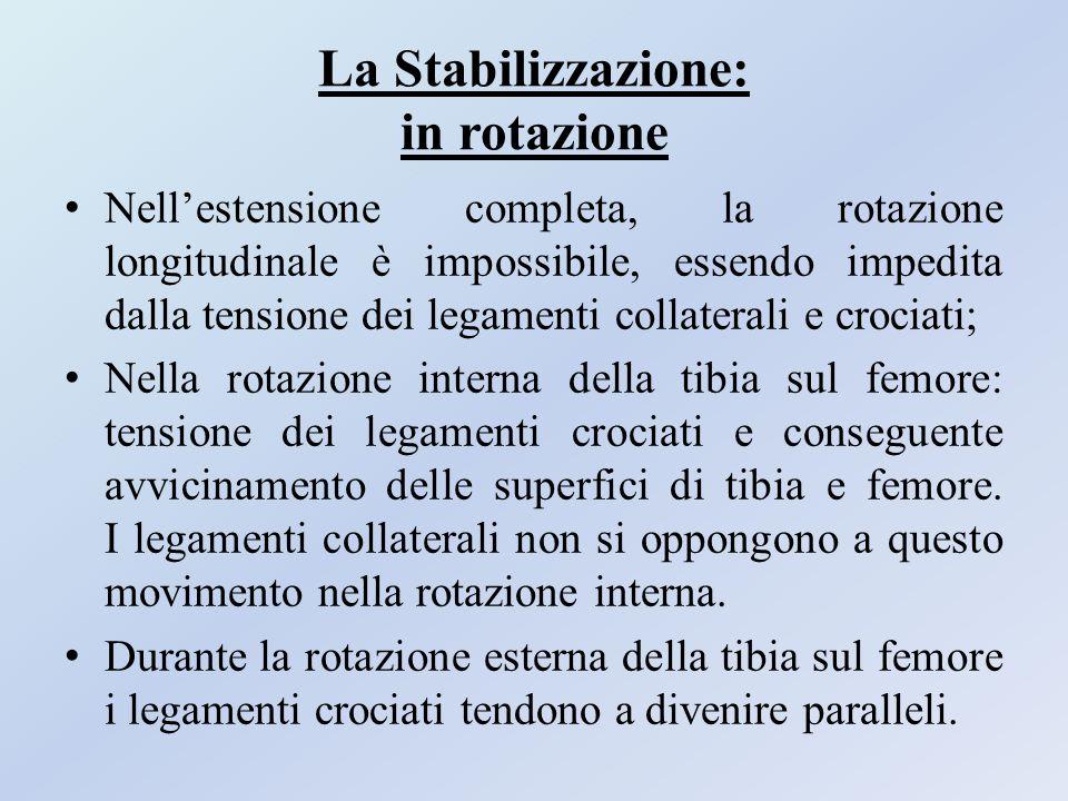 La Stabilizzazione: in rotazione Nell'estensione completa, la rotazione longitudinale è impossibile, essendo impedita dalla tensione dei legamenti col