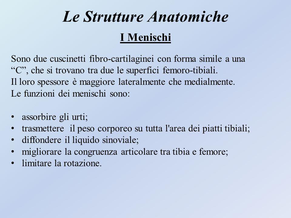 """Le Strutture Anatomiche I Menischi Sono due cuscinetti fibro-cartilaginei con forma simile a una """"C"""", che si trovano tra due le superfici femoro-tibia"""