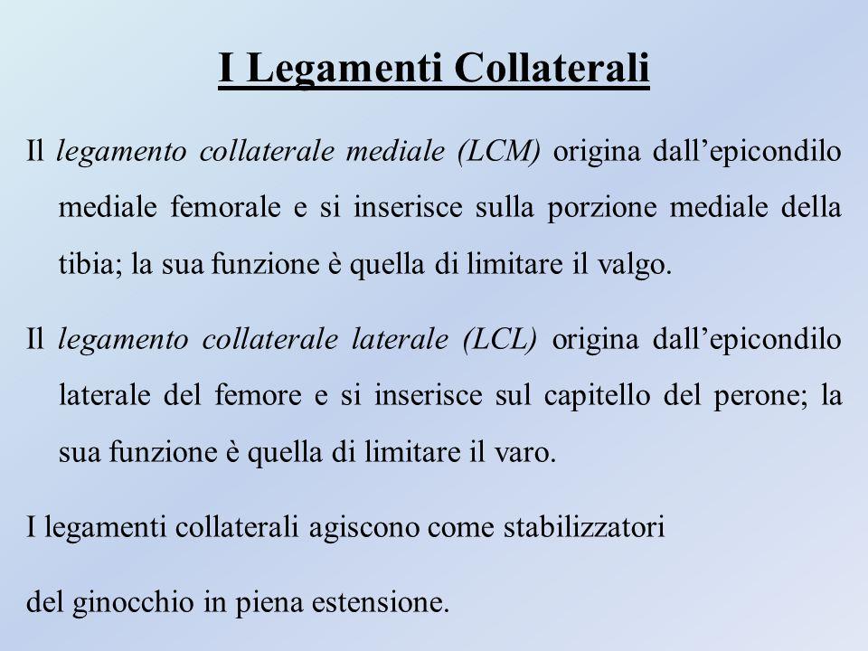 I Legamenti Collaterali Il legamento collaterale mediale (LCM) origina dall'epicondilo mediale femorale e si inserisce sulla porzione mediale della ti