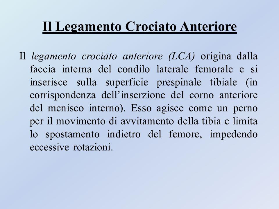 Il Legamento Crociato Anteriore Il legamento crociato anteriore (LCA) origina dalla faccia interna del condilo laterale femorale e si inserisce sulla
