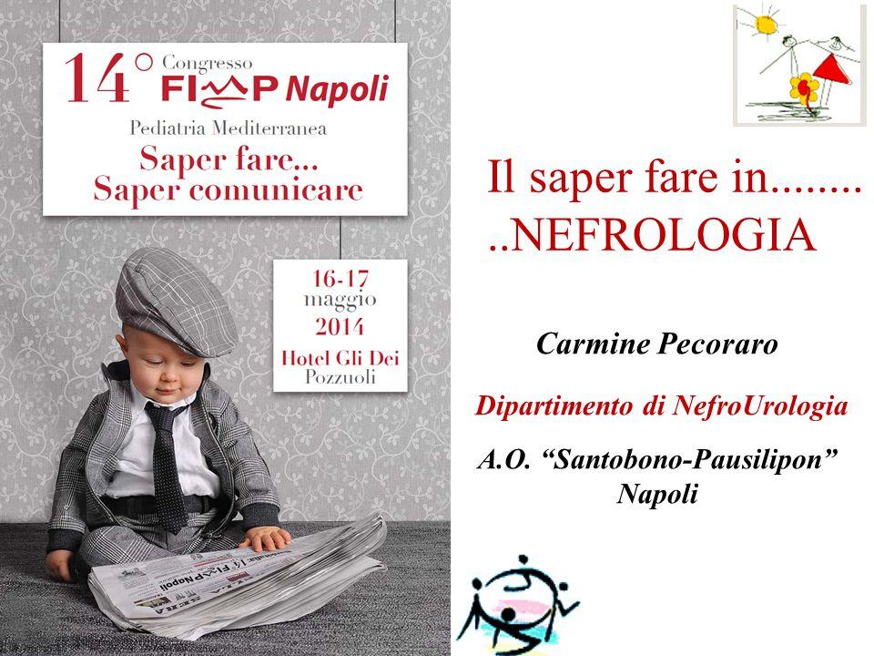 Il saper fare in..........NEFROLOGIA Carmine Pecoraro Dipartimento di NefroUrologia A.O.