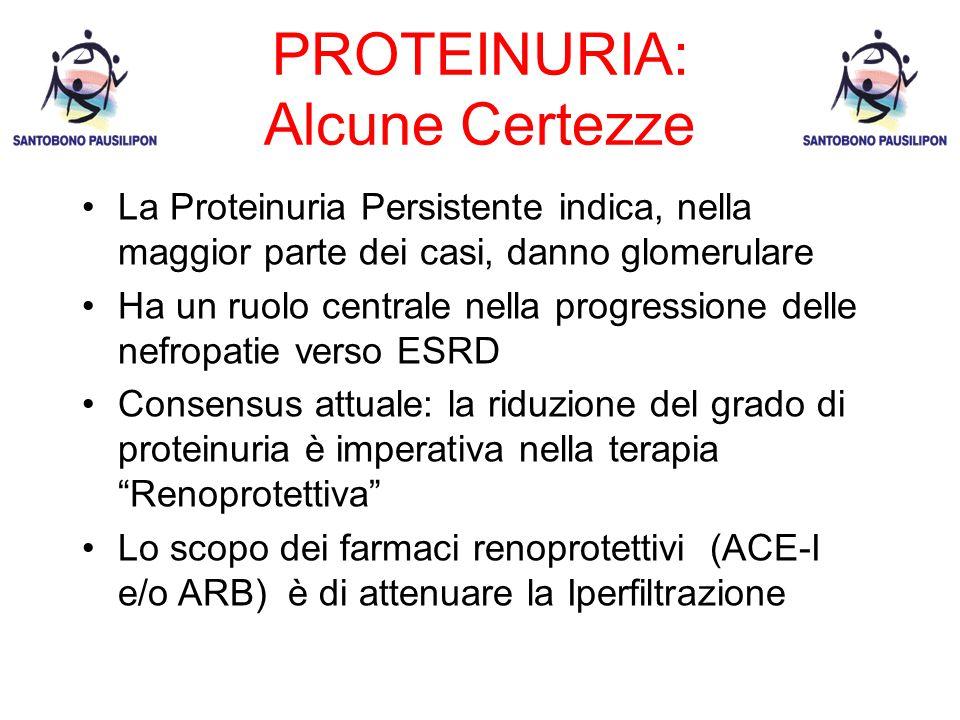 PROTEINURIA: Alcune Certezze La Proteinuria Persistente indica, nella maggior parte dei casi, danno glomerulare Ha un ruolo centrale nella progressione delle nefropatie verso ESRD Consensus attuale: la riduzione del grado di proteinuria è imperativa nella terapia Renoprotettiva Lo scopo dei farmaci renoprotettivi (ACE-I e/o ARB) è di attenuare la Iperfiltrazione