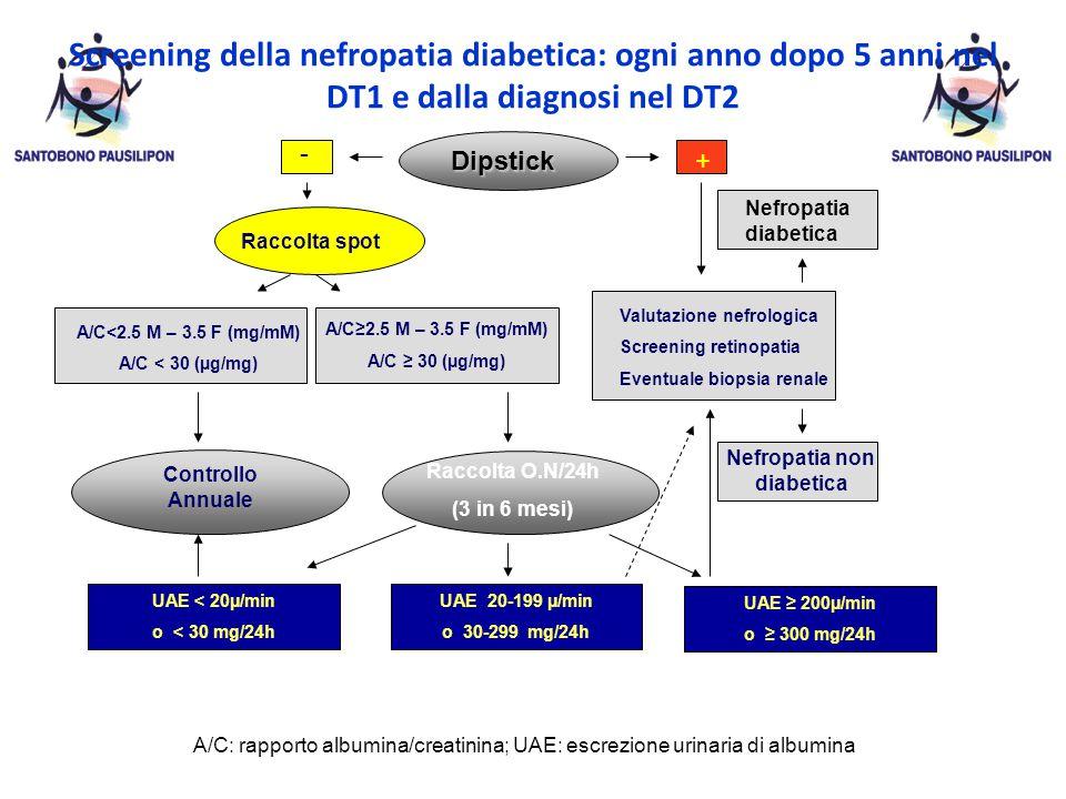 Dipstick - + Raccolta spot A/C≥2.5 M – 3.5 F (mg/mM) A/C ≥ 30 (µg/mg) A/C<2.5 M – 3.5 F (mg/mM) A/C < 30 (µg/mg) Valutazione nefrologica Screening retinopatia Eventuale biopsia renale Nefropatia diabetica Nefropatia non diabetica Raccolta O.N/24h (3 in 6 mesi) UAE < 20µ/min o < 30 mg/24h UAE 20-199 µ/min o 30-299 mg/24h UAE ≥ 200µ/min o ≥ 300 mg/24h A/C: rapporto albumina/creatinina; UAE: escrezione urinaria di albumina Controllo Annuale Screening della nefropatia diabetica: ogni anno dopo 5 anni nel DT1 e dalla diagnosi nel DT2