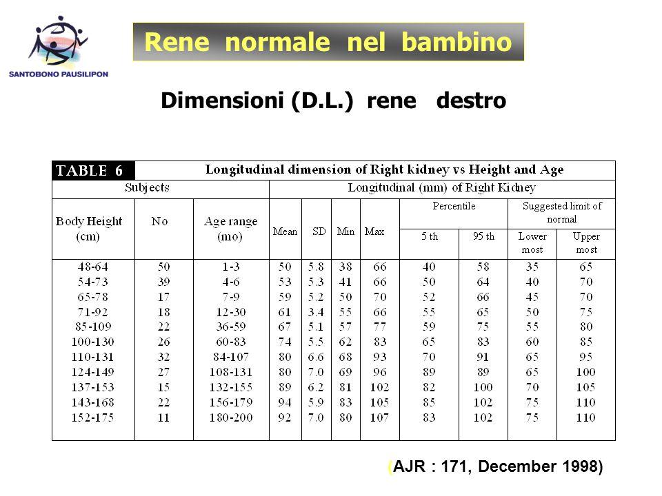 Rene normale nel bambino Dimensioni (D.L.) rene destro (AJR : 171, December 1998)