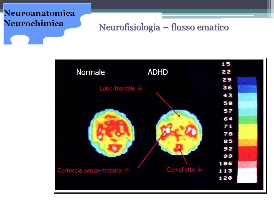 COMORBILITA' Quali disturbi si possono trovare associati all'ADHD.