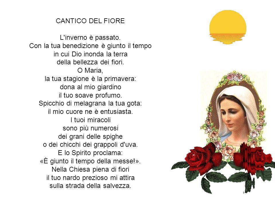 ALLA VERGINE MARIA Diva, il cui Figlio del gran Padre è Figlio, rimira queste vie fallaci e torte e i vani errori, onde si corre a morte, al danno ete