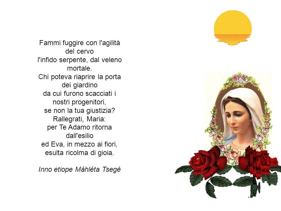 OFFERTA DELLA GIORNATA A MARIA O Maria, Madre del Verbo incarnato e Madre mia dolcissima, sono qui ai tuoi piedi mentre sorge un nuovo giorno, un altro grande dono del Signore.