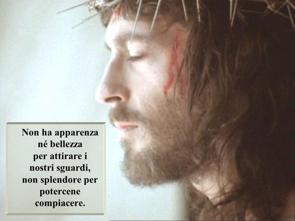 Ho un solo Sposo sulla terra: Gesù Abbandonato; non ho altro Dio fuori di Lui.