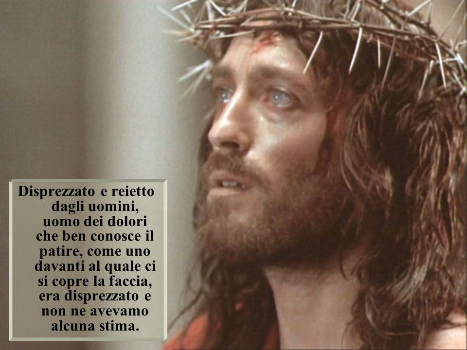 In Lui è tutto il Paradiso con la Trinità e tutta la terra con l'Umanità.