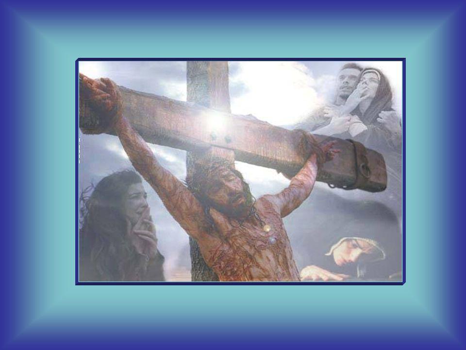 Ogni dolore e ogni pena è dunque un incontro con Lui.
