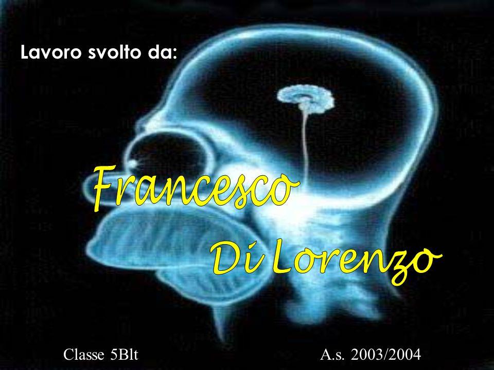 Lavoro svolto da: Classe 5BltA.s. 2003/2004