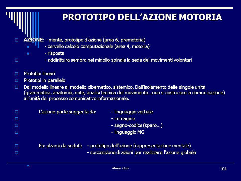 Mario Gori 104 PROTOTIPO DELL'AZIONE MOTORIA  AZIONE: - mente, prototipo d'azione (area 6, premotoria) - cervello calcolo computazionale (area 4, motoria) - cervello calcolo computazionale (area 4, motoria) - risposta - risposta  - addirittura sembra nel midollo spinale la sede dei movimenti volontari  Prototipi lineari  Prototipi in parallelo  Dal modello lineare al modello cibernetico, sistemico.