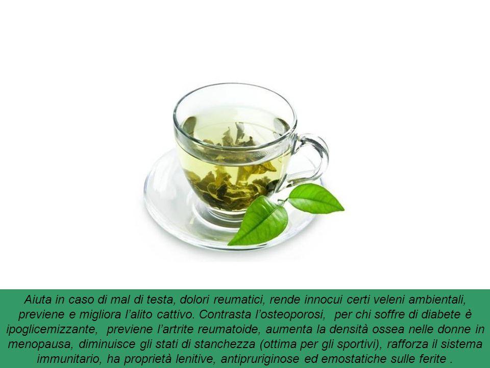 Te' verde : ricco di polifenoli e catechine, ha un potente effetto drenante e anti-ossidante oltre a essere un valido aiuto per prevenire il cancro. P