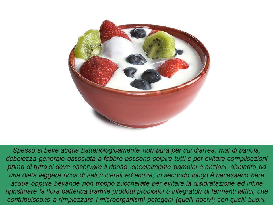 Yogurt : I probiotici sono integratori dietetici composti da microrganismi vivi. I tipi più comuni sono i batteri dell'acido lattico e i bifido batter