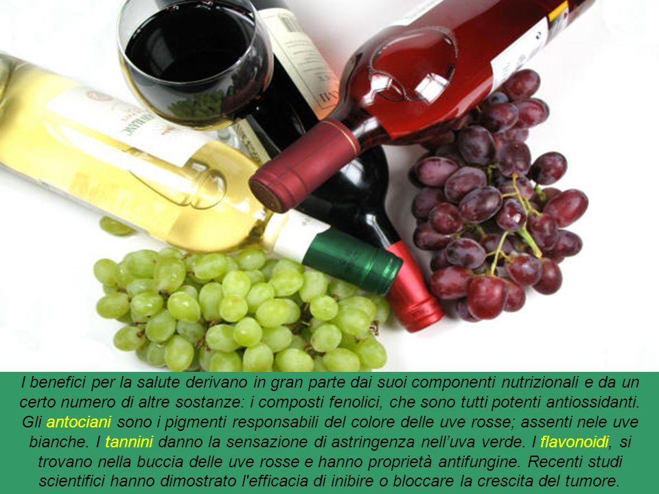 Vino : bevanda alcolica, ottenuta esclusivamente dalla fermentazione del frutto della vite, l'uva o del mosto. Il vino si può ottenere da uve apparten