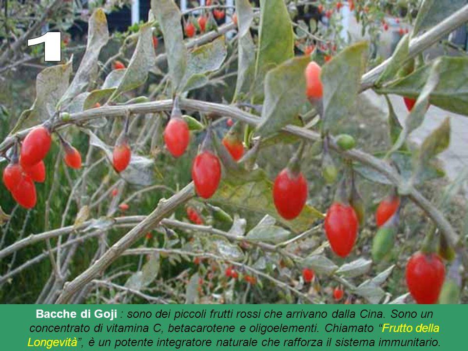 Bacche di Goji : sono dei piccoli frutti rossi che arrivano dalla Cina.
