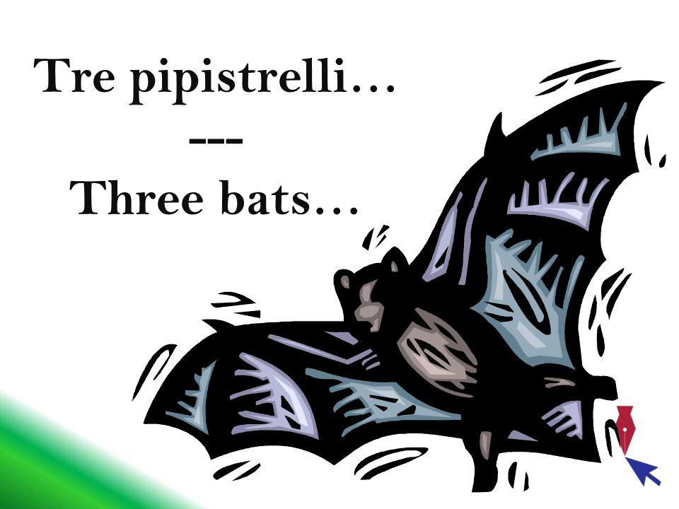 Tre pipistrelli decidono di fare una gara che consiste nel compiere un viaggio e di ritornare con più sangue.