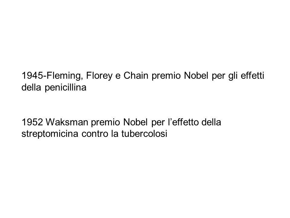 1945-Fleming, Florey e Chain premio Nobel per gli effetti della penicillina 1952 Waksman premio Nobel per l'effetto della streptomicina contro la tubercolosi