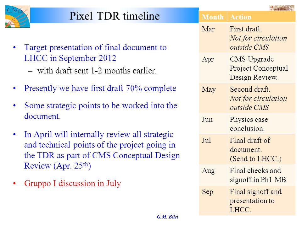 INFN Draft Contribution profile G.M. Bilei