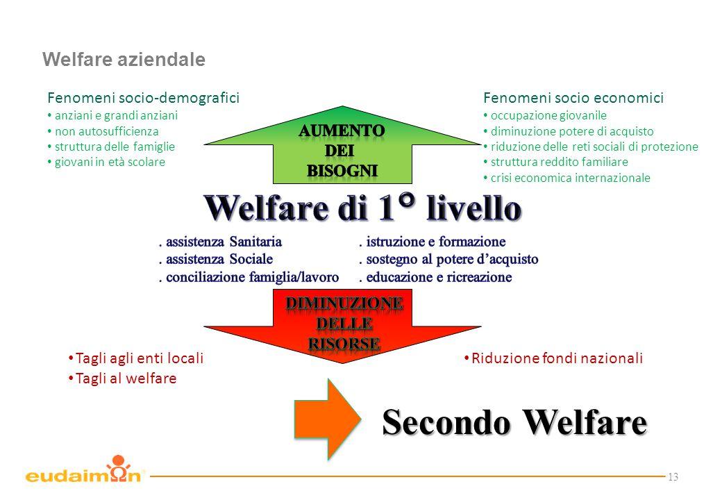 13 Welfare aziendale Tagli agli enti locali Tagli al welfare Fenomeni socio-demografici anziani e grandi anziani non autosufficienza struttura delle f