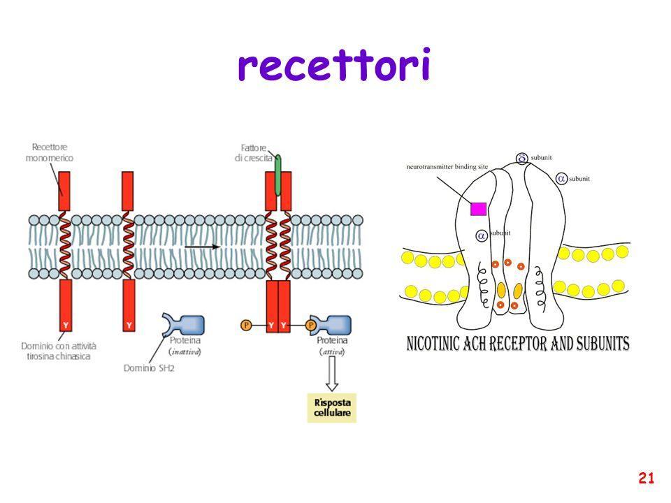 recettori 21