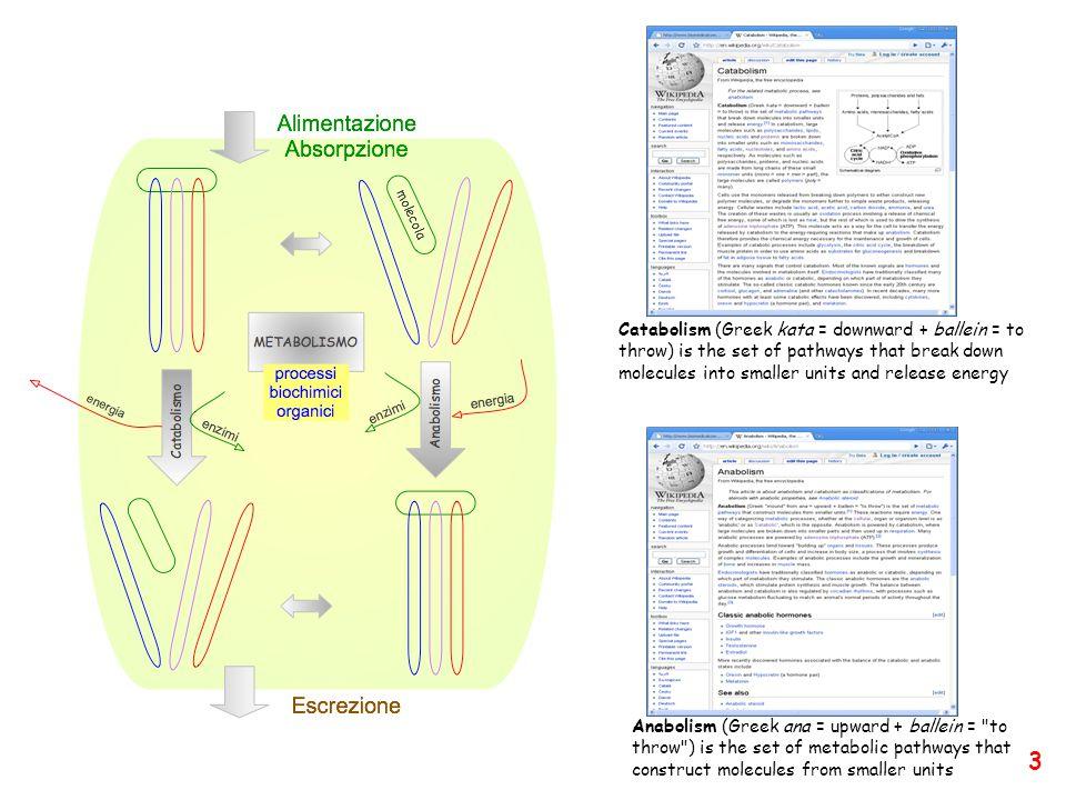 Ingegneria proteica Difficoltà di progettazioni de-novo di proteine a funzione pre-definita (solo 260 documenti nella PDB).