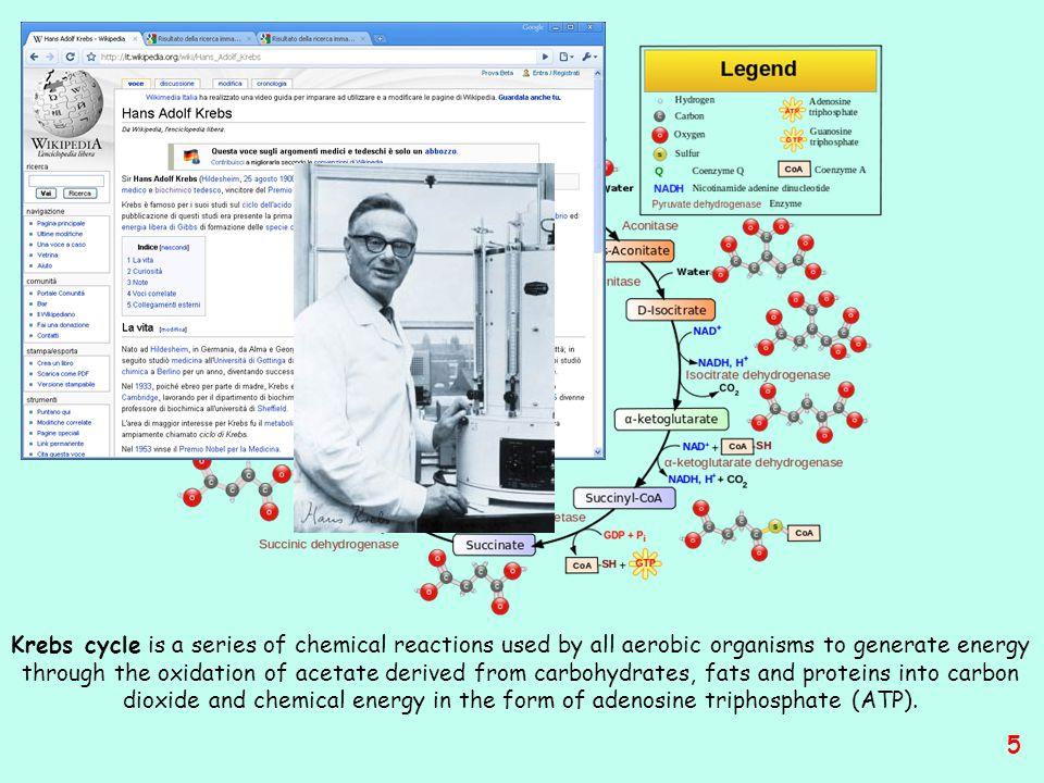 Per mezzo delle informazioni fornite da REACTOME è possibile seguire molti percorsi di reazioni tra proteine, acidi nucleici, piccole molecole ed i loro complessi molecolari delle specie considerate come rappresentative dei diversi organismi viventi 6