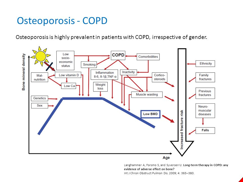 Langhammer A, Forsmo S, and Syversen U. Long-term therapy in COPD: any evidence of adverse effect on bone? Int J Chron Obstruct Pulmon Dis. 2009; 4: 3
