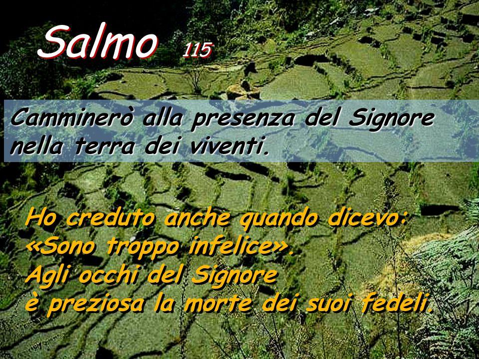 Salmo 115 Camminerò alla presenza del Signore nella terra dei viventi.