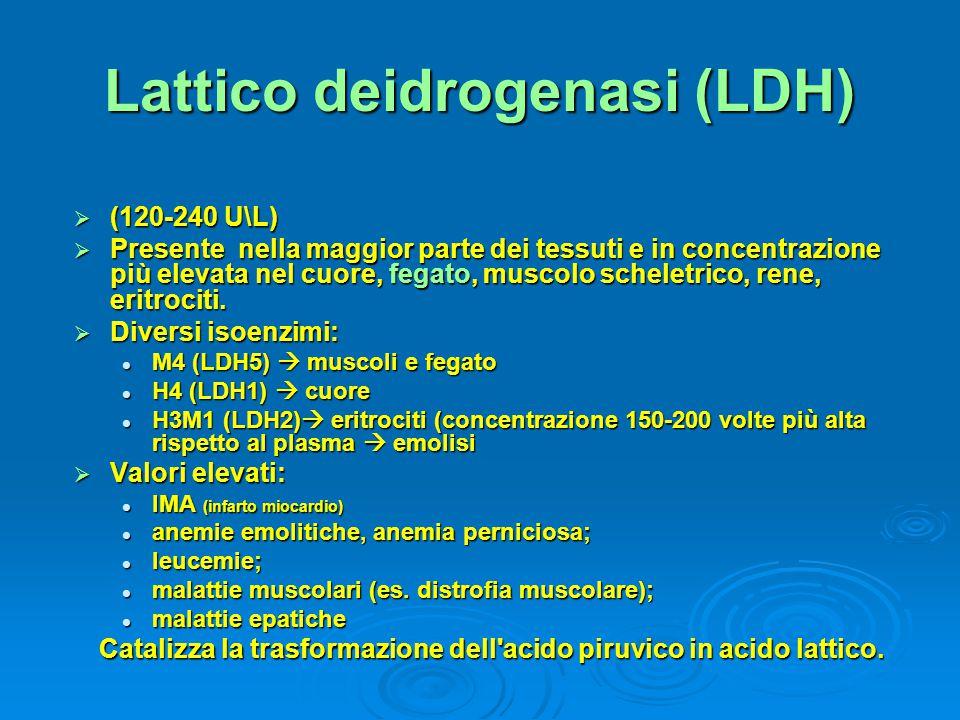 Lattico deidrogenasi (LDH)  (120-240 U\L)  Presente nella maggior parte dei tessuti e in concentrazione più elevata nel cuore, fegato, muscolo schel