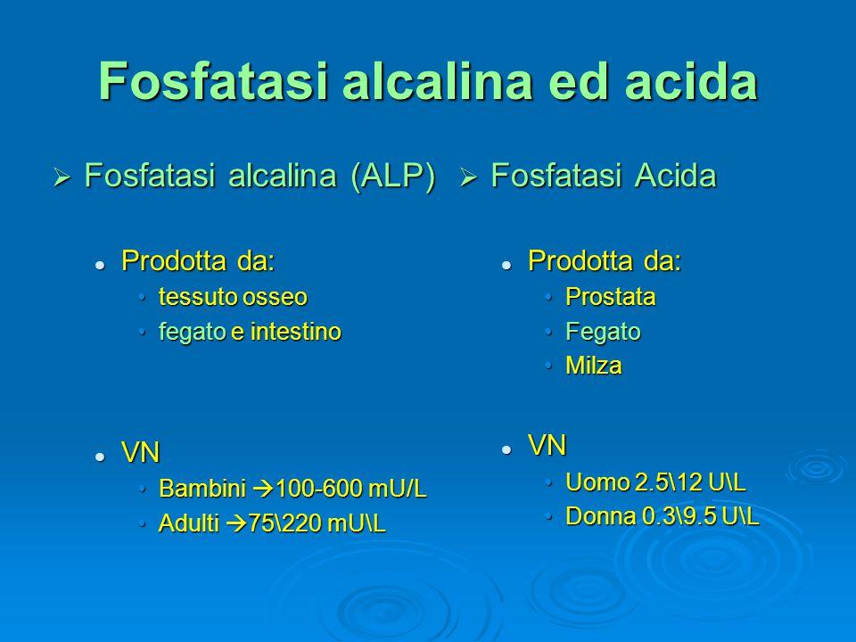 Fosfatasi alcalina ed acida  Fosfatasi alcalina (ALP) Prodotta da: Prodotta da: tessuto osseotessuto osseo fegato e intestinofegato e intestino VN VN