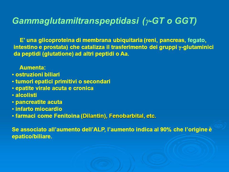 Gammaglutamiltranspeptidasi (  -GT o GGT) E' una glicoproteina di membrana ubiquitaria (reni, pancreas, fegato, intestino e prostata) che catalizza i
