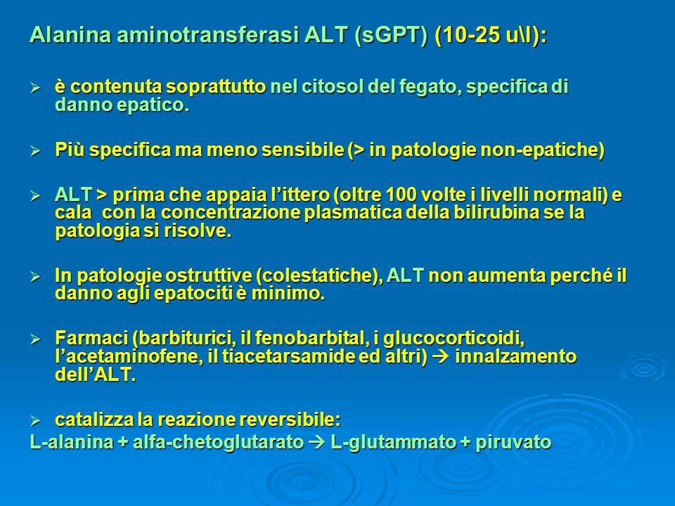 Alanina aminotransferasi ALT (sGPT) (10-25 u\l):  è contenuta soprattutto nel citosol del fegato, specifica di danno epatico.  Più specifica ma meno