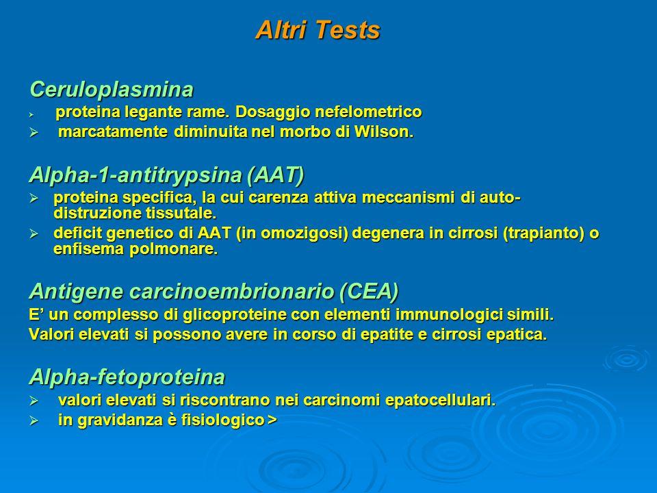 Altri Tests Ceruloplasmina  proteina legante rame. Dosaggio nefelometrico  marcatamente diminuita nel morbo di Wilson. Alpha-1-antitrypsina (AAT) 
