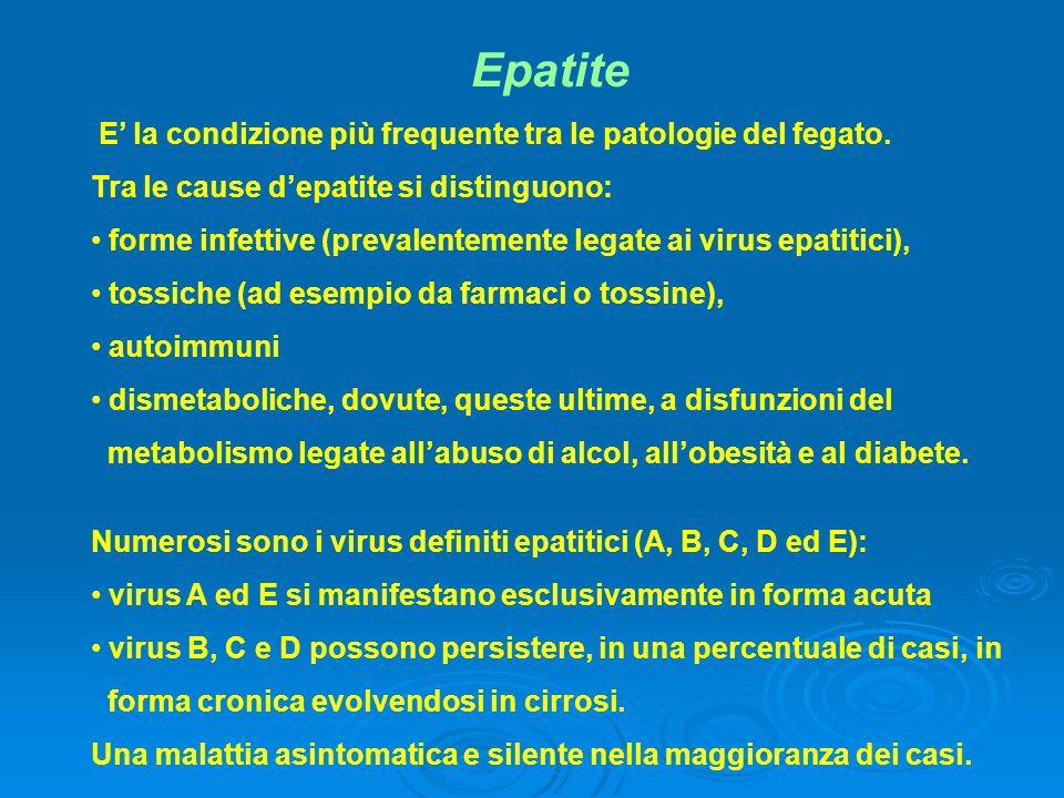 Epatite E' la condizione più frequente tra le patologie del fegato. Tra le cause d'epatite si distinguono: forme infettive (prevalentemente legate ai