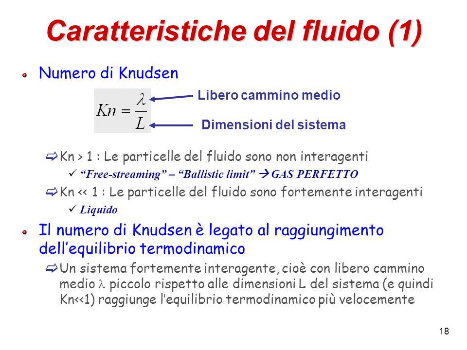 18 Caratteristiche del fluido (1) Numero di Knudsen  Kn > 1 : Le particelle del fluido sono non interagenti Free-streaming – Ballistic limit  GAS PERFETTO  Kn << 1 : Le particelle del fluido sono fortemente interagenti Liquido Il numero di Knudsen è legato al raggiungimento dell'equilibrio termodinamico  Un sistema fortemente interagente, cioè con libero cammino medio piccolo rispetto alle dimensioni L del sistema (e quindi Kn<<1) raggiunge l'equilibrio termodinamico più velocemente Libero cammino medio Dimensioni del sistema
