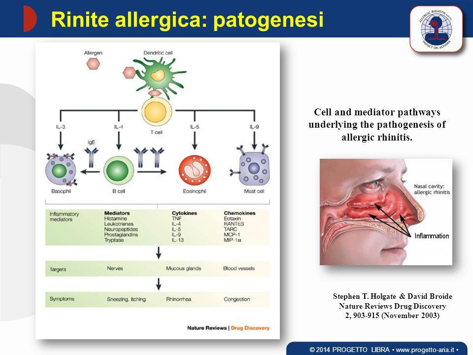 Rinite allergica: patogenesi Cell and mediator pathways underlying the pathogenesis of allergic rhinitis. Stephen T. Holgate & David Broide Nature Rev